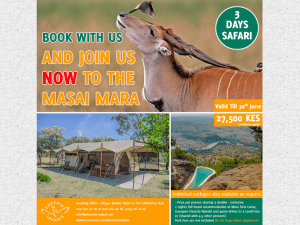 3 Days 2 Nights Mara Shared Safari
