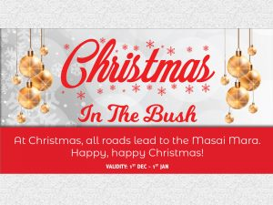 CHRISTMAS IN THE BUSH